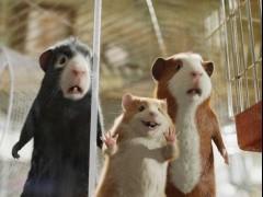 3D动画电影《豚鼠特工队》 萌宠豚鼠与亿万富翁奇遇记