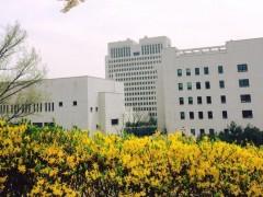 韩国七旬老人性侵亲孙女五年 奶奶无视孙女被性骚扰获刑